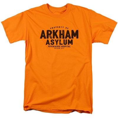 Batman Arkham Asylum Men's Regular Fit T-Shirt