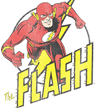 The Flash Run Flash Run Men's Regular Fit T-Shirt