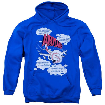 Airplane Picked The Wrong Day Pullover Hoodie