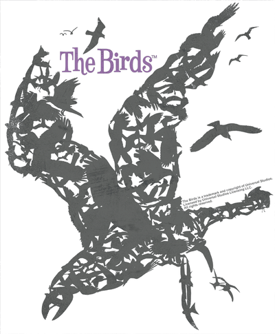 Birds Poster Men's Premium Slim Fit T-Shirt