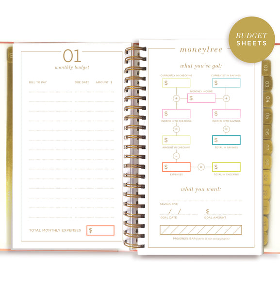 2018 paint stripe planner preorder lake for Paint planner