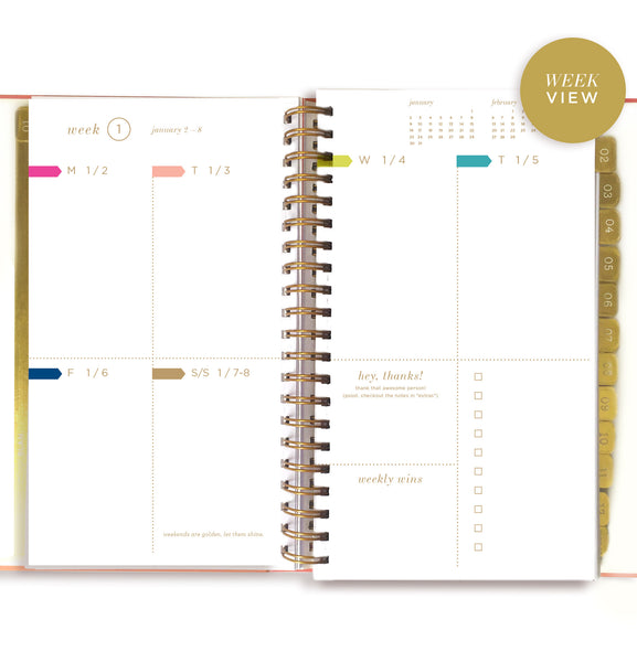 2019 SLIM FAB FLAMINGO dream.plan.do. planner PREORDER