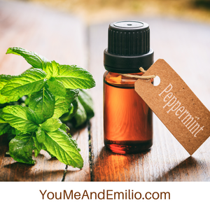 Peppermint Essential Oil | Pure Oil