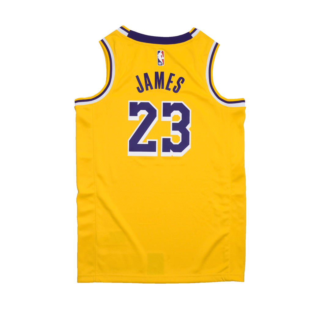 Youth Lebron James Icon Swingman Jersey (Lakers)