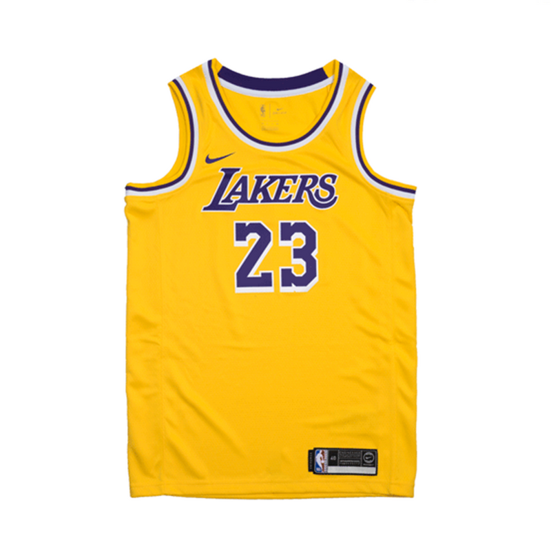 buy online 54f27 b795c Youth Lebron James Icon Swingman Jersey (Lakers)