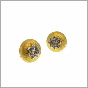 FM23.14 Royal Star Gold Stud Earrings