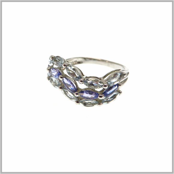 HG27.23 Tanzanite & Blue Topaz Ring