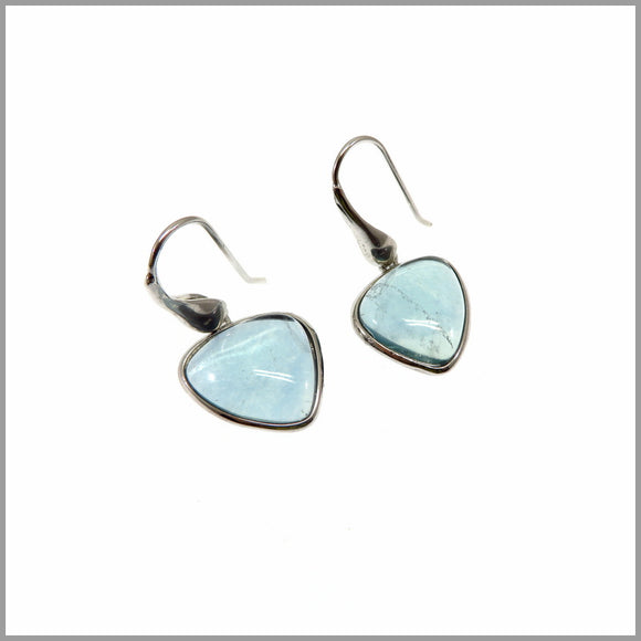 LG21.77 Fluorite Earrings