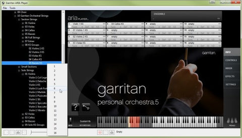 Garritan Personal Orchesta 5 Front Page