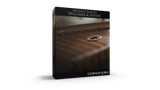 Download CineSamples Dulcimer and Zither