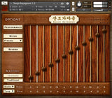 Icebreaker Audio Sanjo Gayageum interface