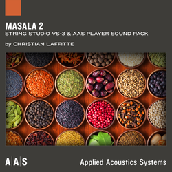 AAS Masala 2 Strings Studio VS-3 Sound Pack