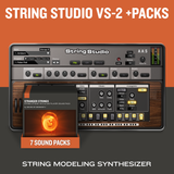 AAS String Studio VS-2 Bundle