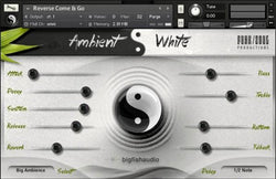 Download Big Fish Audio Ambient White