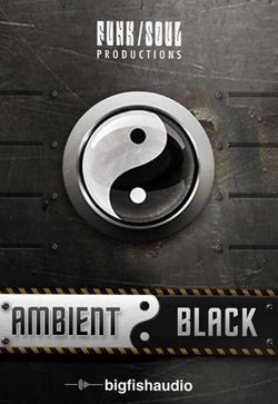Big Fish Audio Ambient Black