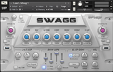 Buy Big Fish Audio Swagg Hip Hop, R&B and Pop Synth