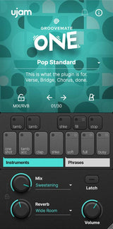 ujam Groovemate ONE interface