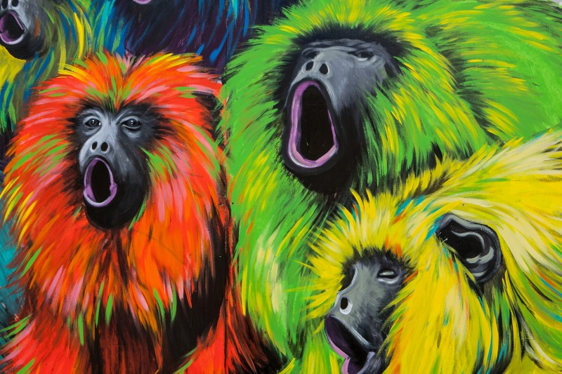 Colourful monkeys