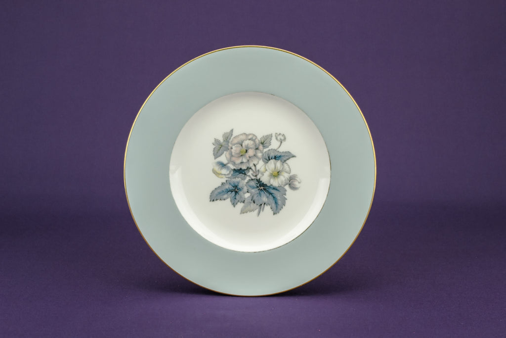 6 pale blue medium plates