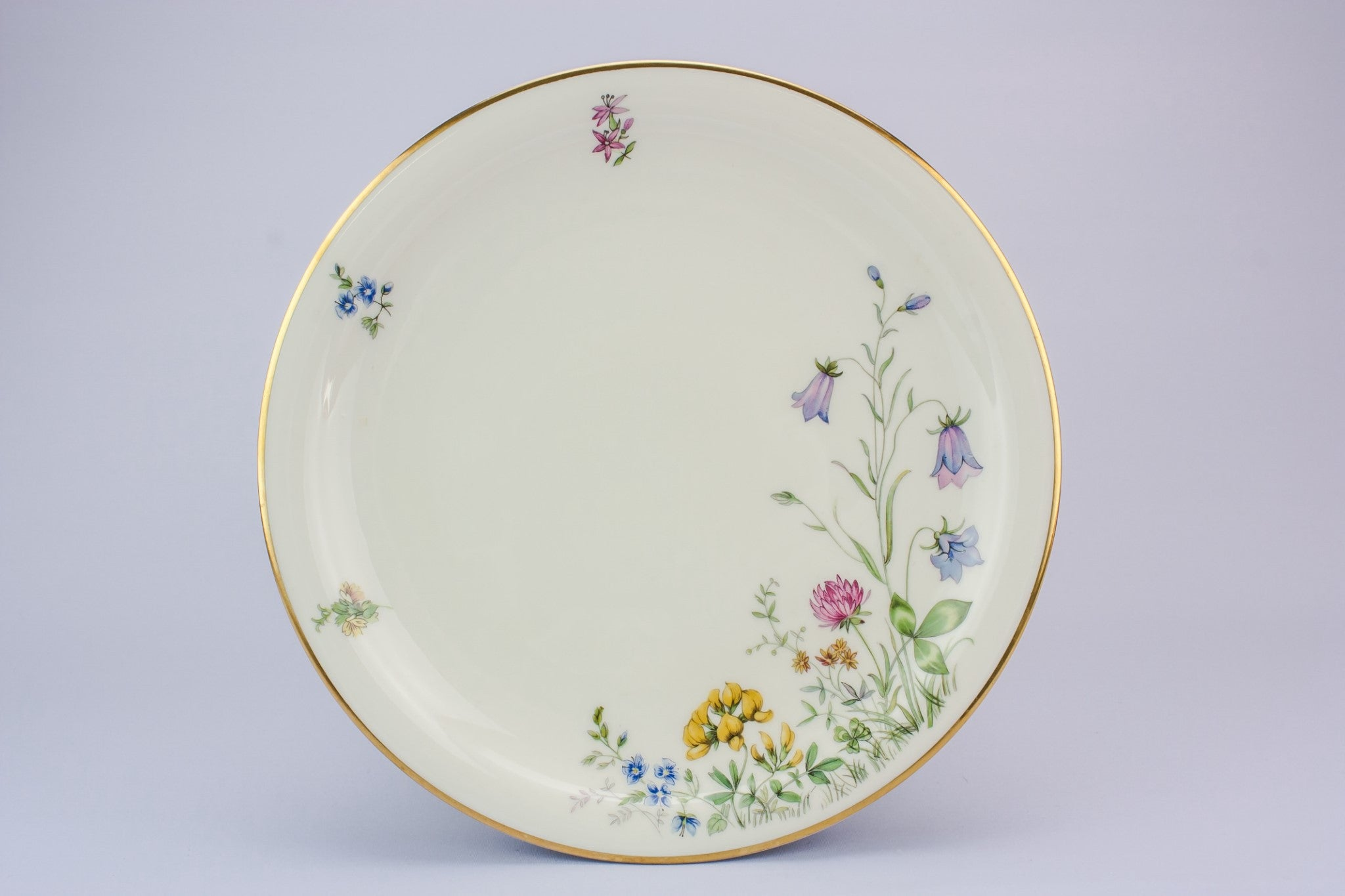 6 medium porcelain plates