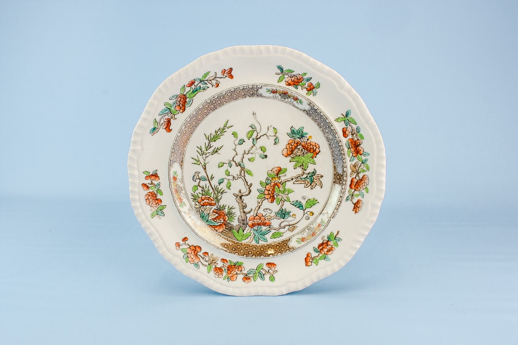 6 Copeland bone china plates