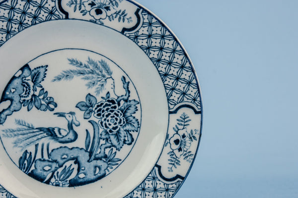 2 blue and white plates
