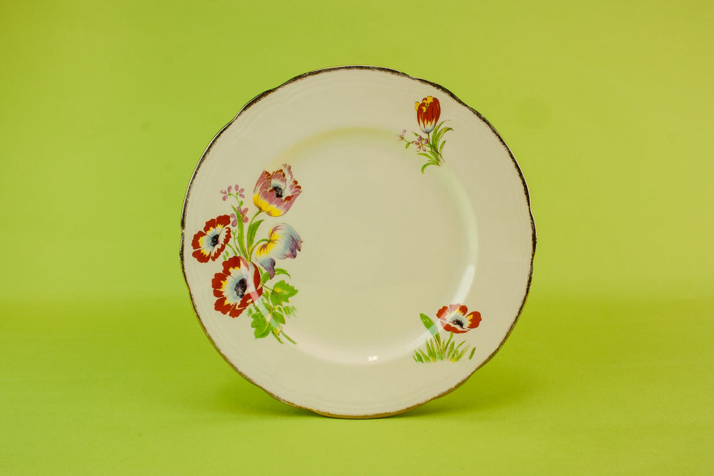 6 Alfred Meakin pottery plates