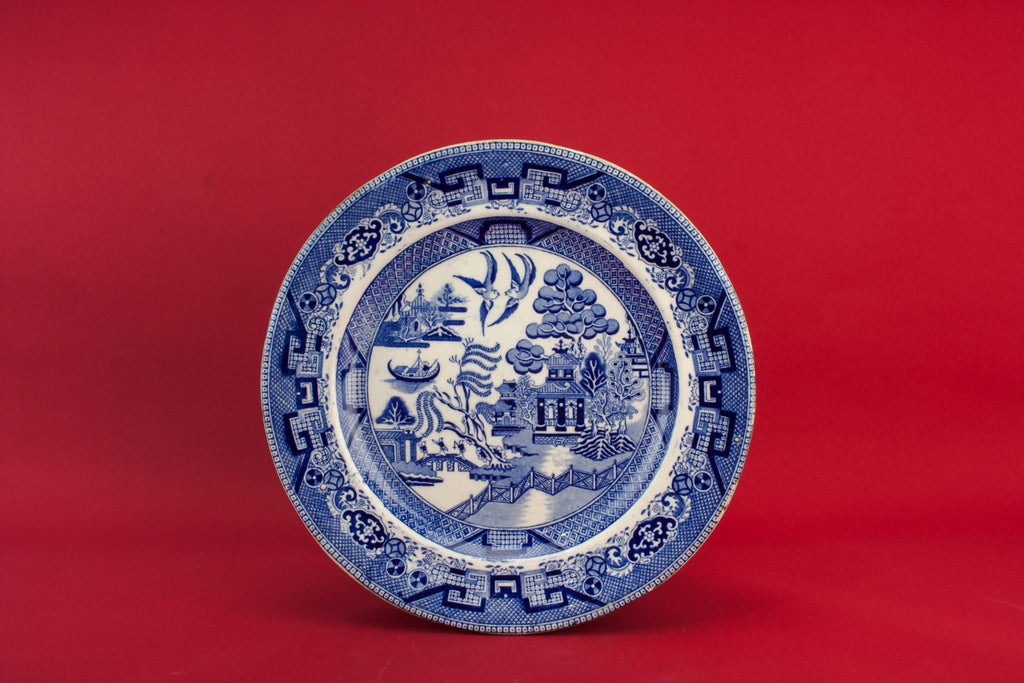 Blue and white medium plate