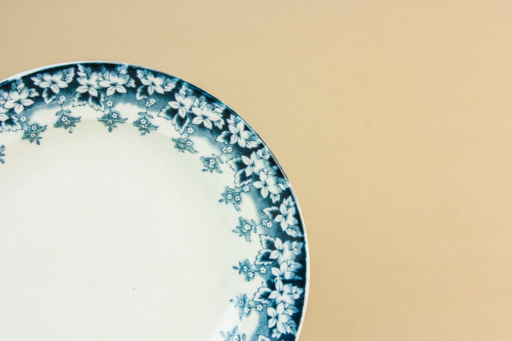 5 blue and white dinner plates