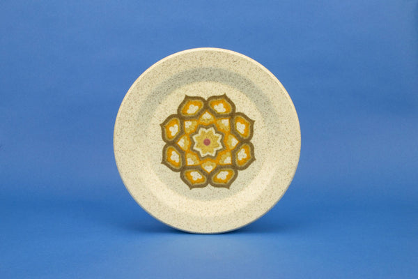 6 dinner plates by Palissy