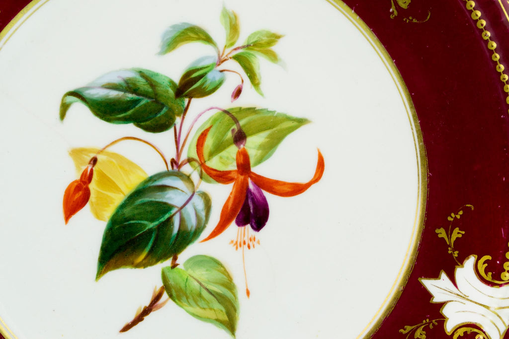 5 Floral Decorative Plates, English 19th Century