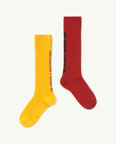 Worm Kids Socks Red The Animals Observatory | Zirkuss