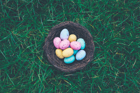 Easter Egg Nest Photography