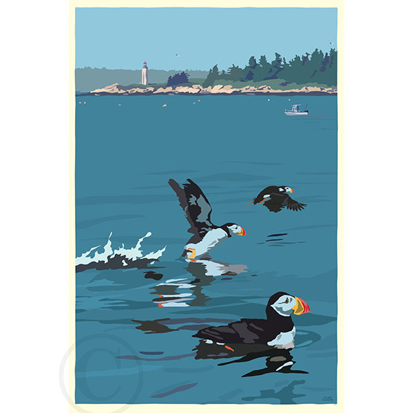 Puffins At Franklin Island