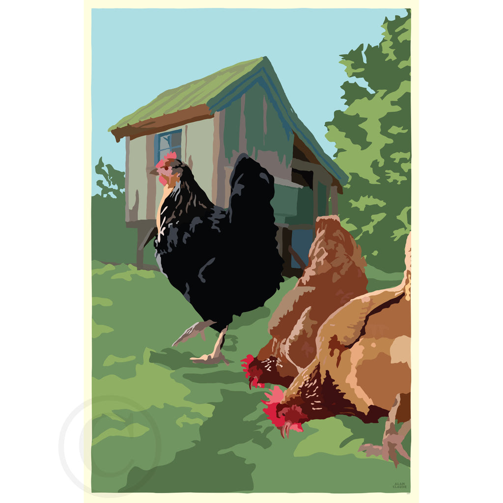 NEW - Spring Chickens