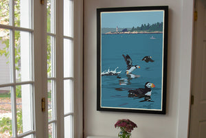 "Puffins At Franklin Island Art Print 24"" x 36"" Framed Wall Poster - Maine by Alan Claude"