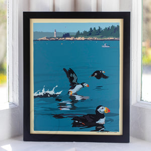 "Puffins At Franklin Island Art Print 8"" x 10"" Framed Wall Poster"