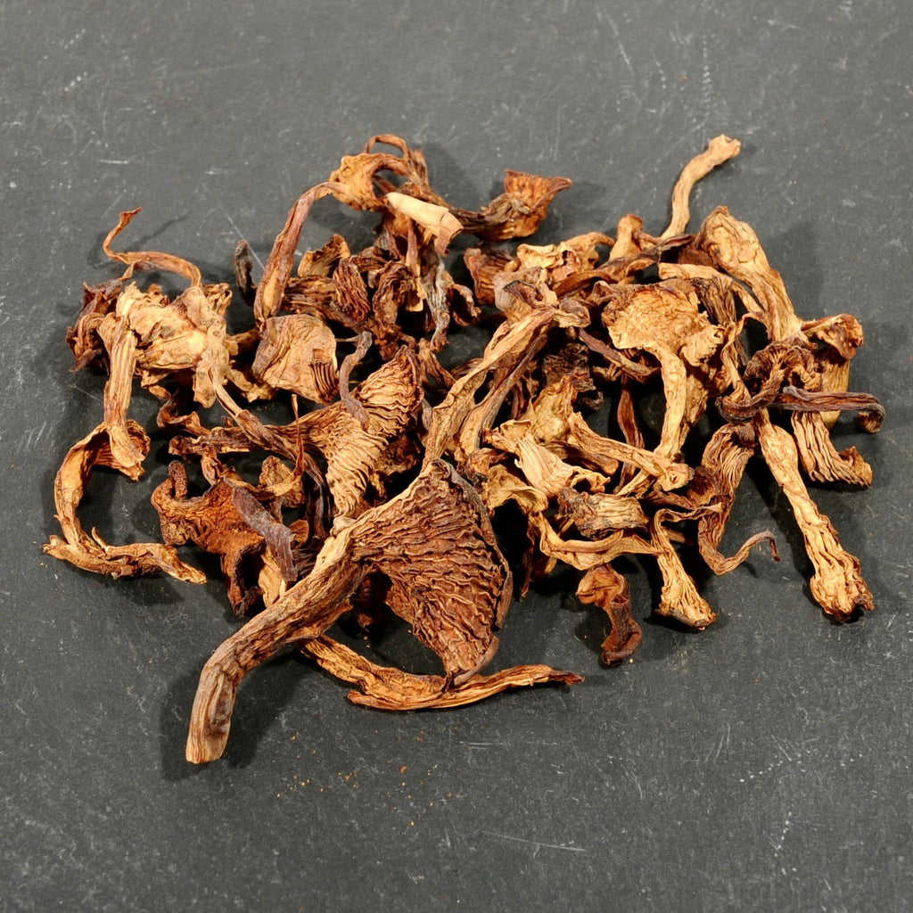 Chanterelle Mushrooms - Dried-Ingredients-SKORDO