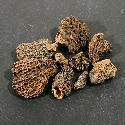 Morel Mushrooms - Dried-Ingredients-SKORDO