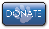 Donate Now to Help Abused and Neglected Animals