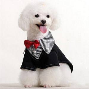 3 Pcs Fashion Bow tie for Small Dogs - ensomart
