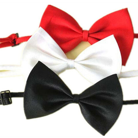 3 Pcs Fashoinate Bow for Small Dogs
