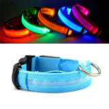 Rechargeable LED Dog Collar + Rechargeable LED Dog Safety Leash - ensomart