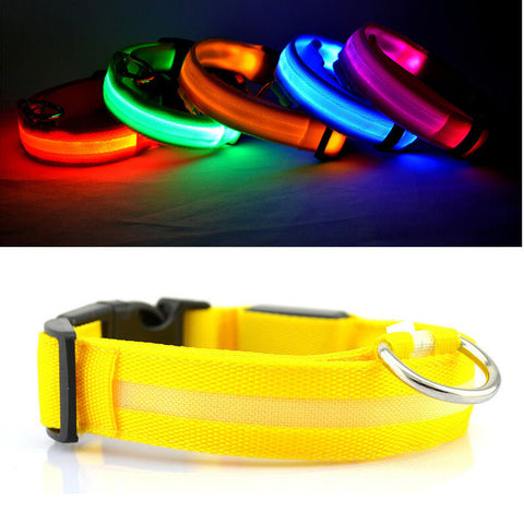USB Rechargeable LED Dog Collar - ensomart