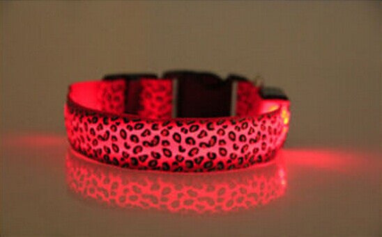 FREE Led Dog Collars - ensomart