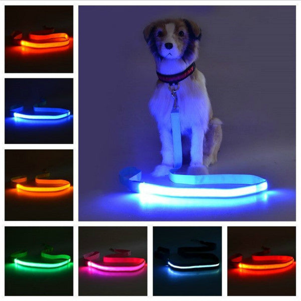 Rechargeable LED Dog Safety Leash - ensomart