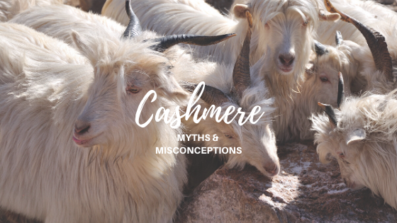 Cashmere Myths & Misconceptions