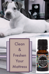 clean and freshen mattress