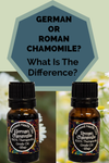 Roman Chamomile or German Chamomile – What's the Difference?