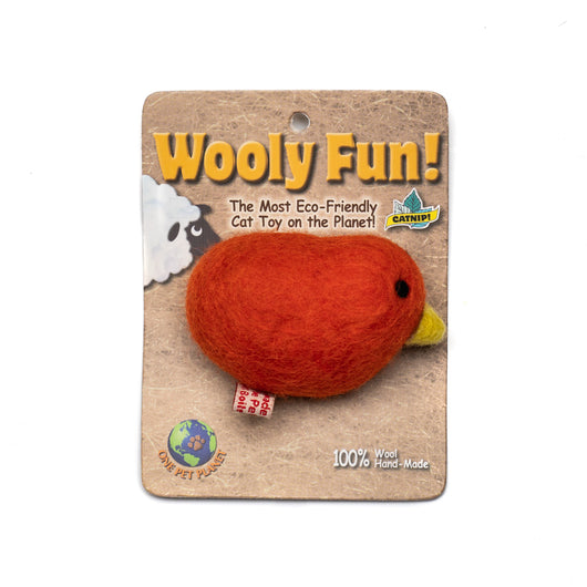Wooly Fun Duck